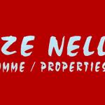Elize Nel Properties