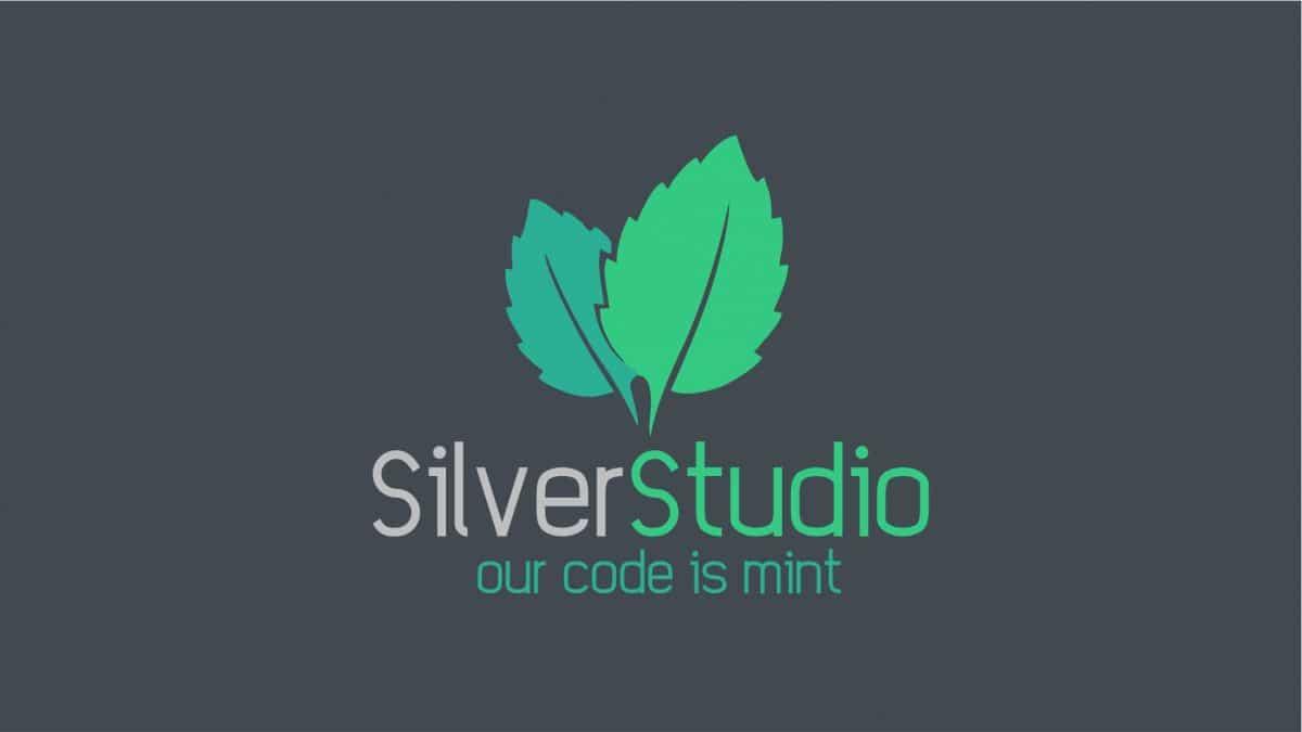 Silver Studio Web Development & Hosting Service Provider Cape Town