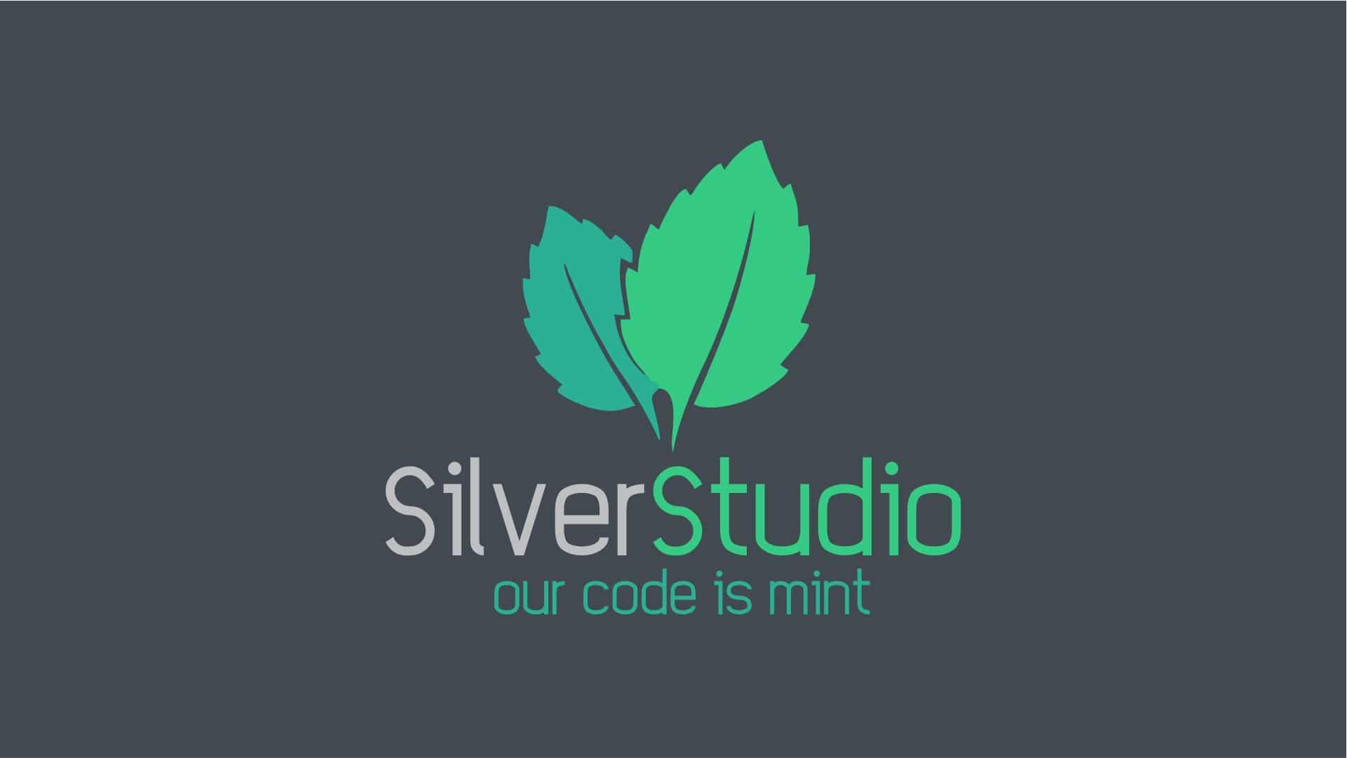 Silver Studio Web Development & Hosting Service Provider Cape Town 1